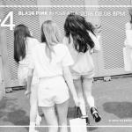 black-pink_1470287608_Screenshot_2016-08-04_at_1.06.19_AM