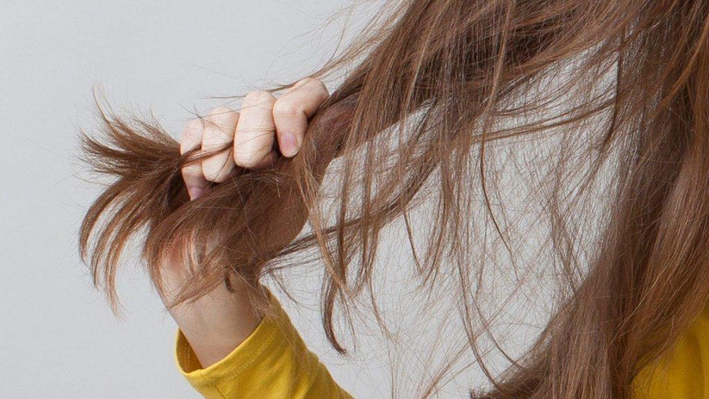 rambut kering shampoo