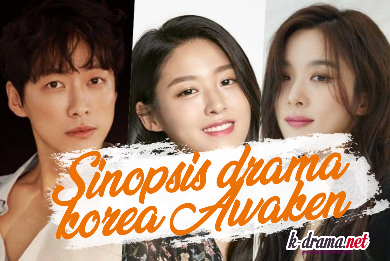 drama korea awaken