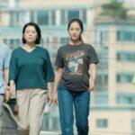 sinopsis film more than family
