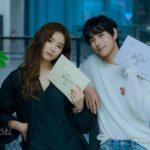 sinopsis drama korea run on